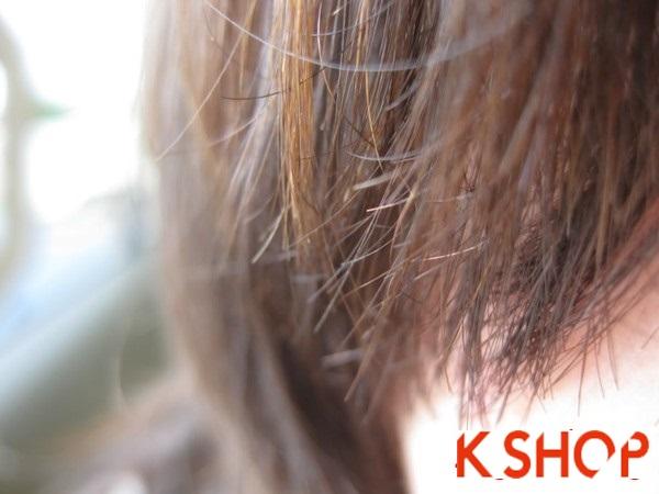 Bí quyết chăm sóc phục hồi mái tóc xơ rối chẻ ngọn 1 cách hiệu quả phần 3