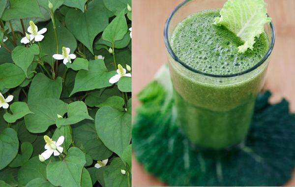 Cách giảm mỡ bụng bằng rau củ trong 1 tuần nhanh nhất phần 1