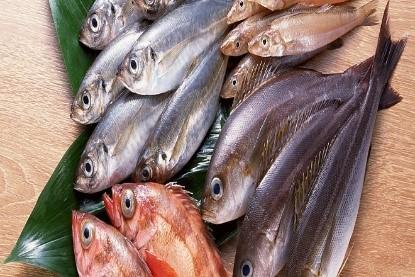 các loại cá chứa nhiều kiềm