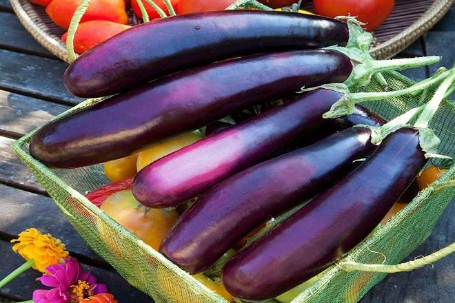 Cà tím là một trong những loại thực phẩm rất có lợi cho sức khỏe