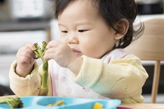 ăn dặm cho bé 11 tháng