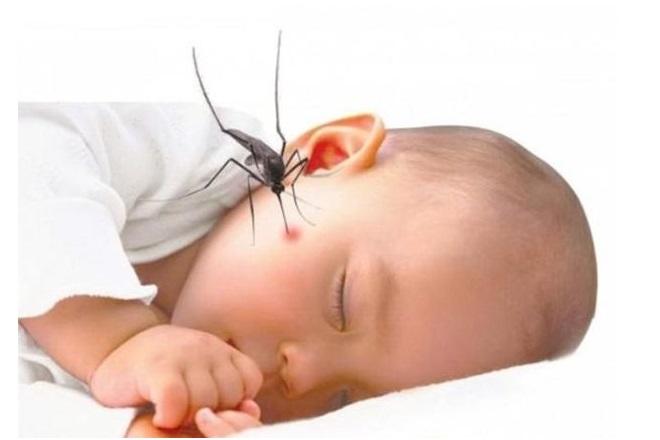 Bé sơ sinh bị sốt xuất huyết