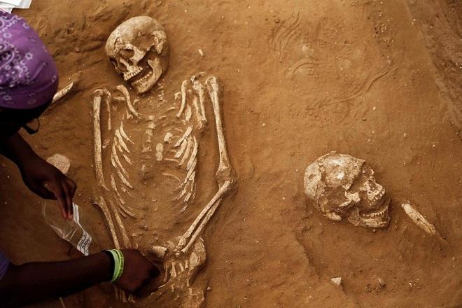 khảo cổ di hài