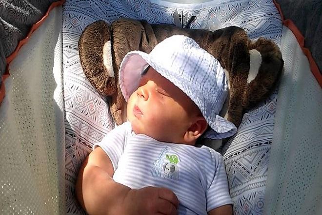 Tắm nắng bổ sung vitamin D cho trẻ
