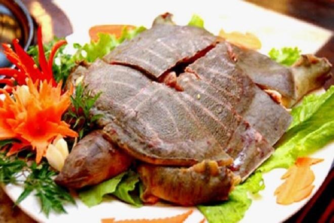 thịt ba ba có giá trị dinh dưỡng cao