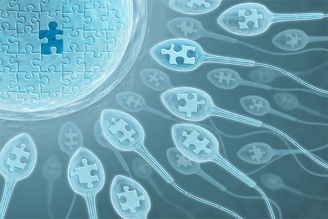 phương pháp thụ tinh nhân tạo