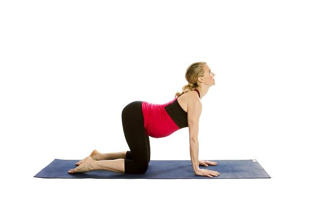 bài tập thể dục cho bà bầu 3 tháng cuối với tư thế lưng mèo