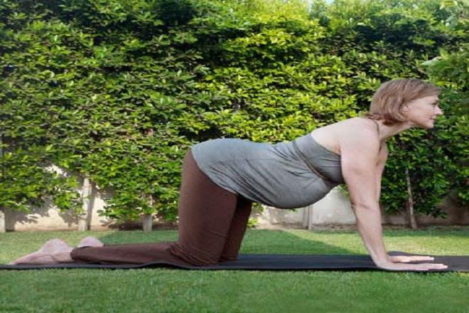 bài tập thể dục cho bà bầu dễ sinh với tư thế chó và mèo