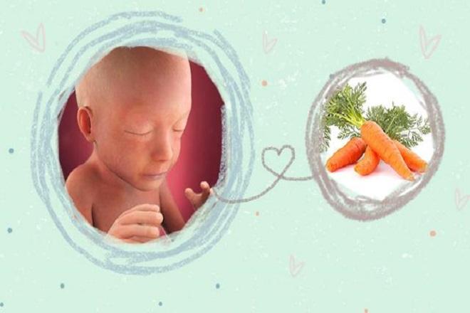 chỉ số thai nhi 21 tuần cho biết kích thước em bé