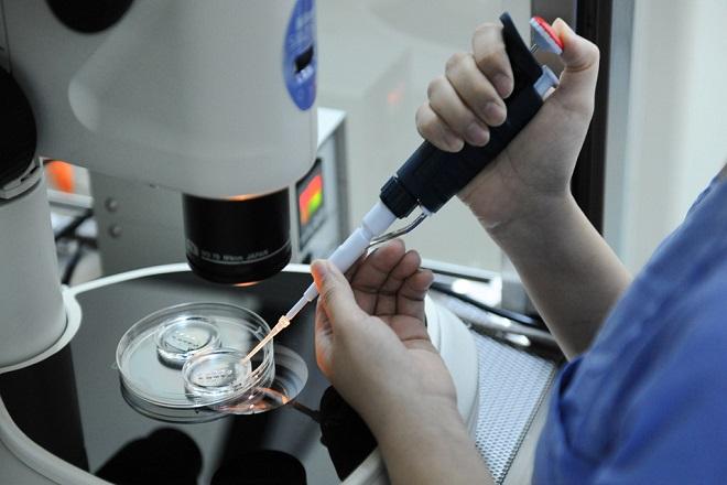 Phương pháp kích thích trứng sinh trưởng trong ống nghiệm