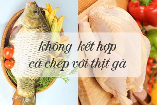 thịt gà và cá chép là 2 loại thức ăn kỵ nhau