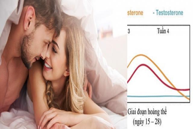 giai đoạn hoàng thể quan hệ rất khó thụ thai thành công