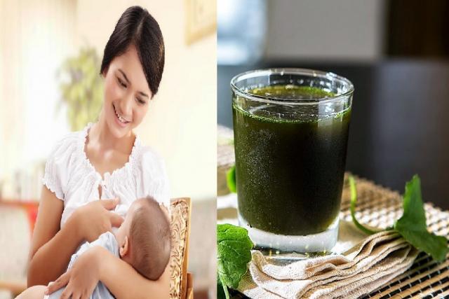 sau sinh uống nước rau má có lợi cho sức khỏe