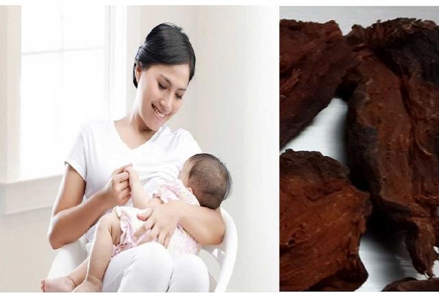 uống hà thủ ô sau sinh không tốt cho mẹ và bé
