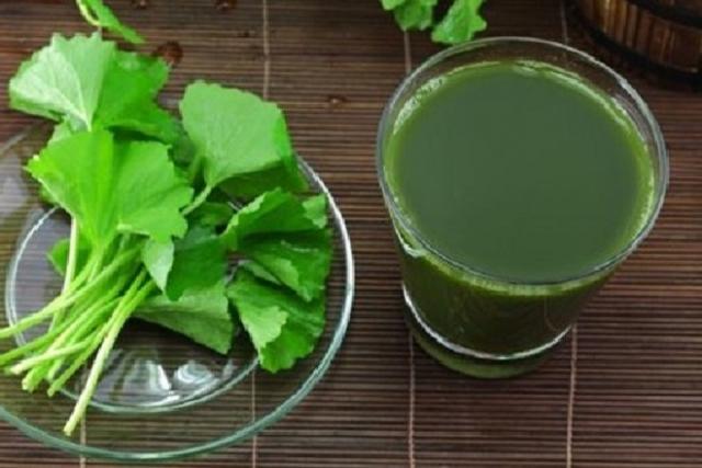 uống nước rau má chữa nóng bụng là quan niệm sai lầm