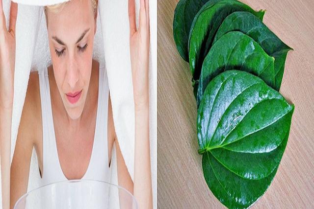 xông hơi bằng lá trầu sau sinh cho vùng mặt giúp đem lại làn da mịn màng