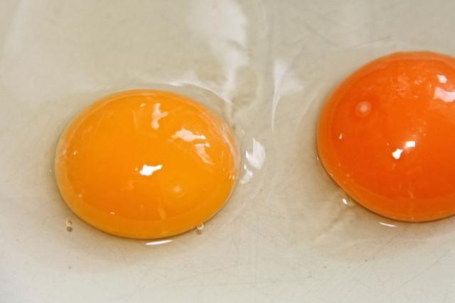 lòng trắng và lòng đổ trứng gà để dưỡng da