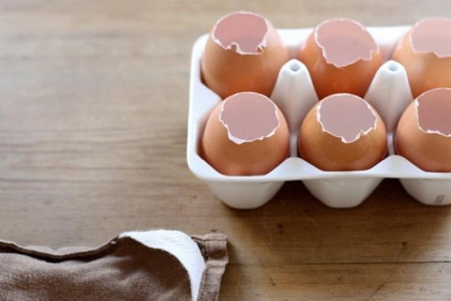 những chiếc vỏ quả trứng