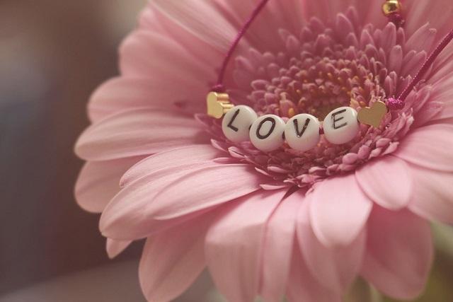 hoa tượng trưng cho tình yêu chung thủy