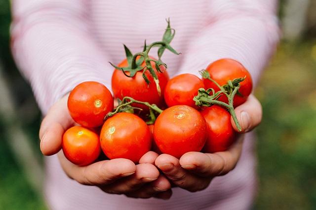món ăn giảm cân với cà chua