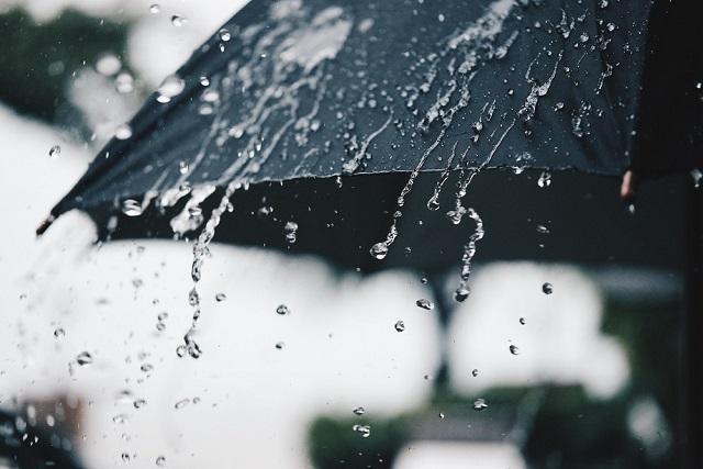 chiếc ô dưới mưa