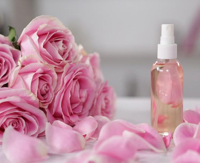 Cách làm tinh dầu hoa hồng nguyên chất ngay tại nhà