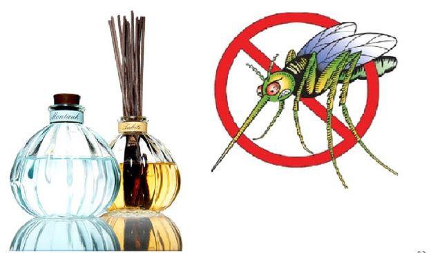 Cách làm tinh dầu sả nguyên chất tại nhà dùng đuổi muỗi
