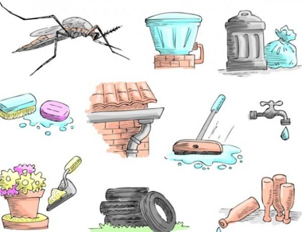 Nguyên nhân và cách phòng chống bệnh sốt xuất huyết tại nhà