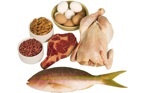 Kết quả hình ảnh cho thức ăn nhiều protein
